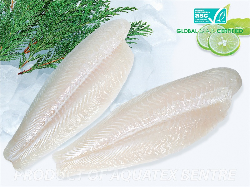 Frozen pangasius hypophthalmus fillet welltrimmed for What is pangasius fish